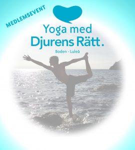 yoga_affisch_2018_www